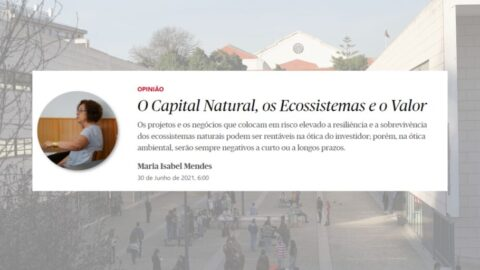 """Artigo de Opinião """"O Capital Natural, os Ecossistemas e o Valor"""", de Maria Isabel Mendes"""